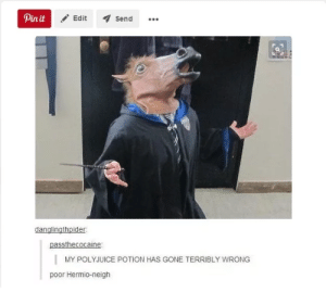 Here Are 100 Hilarious Harry Potter Jokes To Get You Through The Day: Pin it  Edit  Send  danglingthpider  passthecocaine  MY POLYJUICE POTION HAS GONE TERRIBLY WRONG  poor Hermio-neigh Here Are 100 Hilarious Harry Potter Jokes To Get You Through The Day