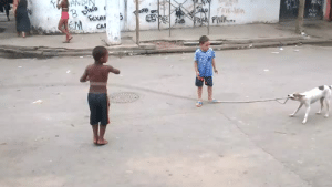 Fucking, Homeless, and Meme: Pind  t1 artgirllullaby:   zahnegott:  gummybearattacktheworldofdespair:  thinking2:  specta-a:  starwarsisgay:  officiallycrying:  brazilian kids playing jump rope with homeless dog (◠‿◠✿)  ・:*:・。.    …listen….is that the same dog from this meme   There's only one dog in Brazil but it's fucking gifted   @ohbonelessworm  national goodboy of brazil  I would vote him to president without a second thought