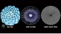 The light of the world vibration.: PINE CONE  ID2Hz  52BHZ OR CROWN CHAKRA VISUAL The light of the world vibration.