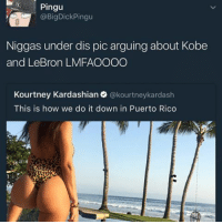 D ROSE D ROSE D ROSE D ROSE D ROSE D ROSE D ROSE 100 ON WRIST GOT ME FEELING LIKE D ROSE: Pingu  @Big Dick Pingu  Niggas under dis pic arguing about Kobe  and LeBron LMFAOOOO  Kourtney Kardashian  @kourtney kardash  This is how we do it down in Puerto Rico D ROSE D ROSE D ROSE D ROSE D ROSE D ROSE D ROSE 100 ON WRIST GOT ME FEELING LIKE D ROSE