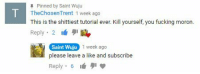 me irl: Pinned by Saint Wuju  TheChosenTrent 1 week ago  This is the shittiest tutorial ever. Kill yourself, you fucking moron.  Reply 2  Saint Wuju  please leave a like and subscribe  Reply 6  1 week ago me irl