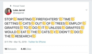 "Keep them employed: Pinned Tweet  Luke Jarret  @lukejarret  STOP!/WASTING-FIREFIGHTERS,/ TIME (  GETTING CATSOUT TREES EMPLOY  GIRAFFESメ.TO--. DO) ITE UNLESS GIRAFFES  WOULD EATS THE 'CATS 1/1DIDN'TS ""Do  THE RESEARCH  8:11 PM Mar 15, 2019 Twitter for iPhone  1K Retweets  4.4K Likes Keep them employed"
