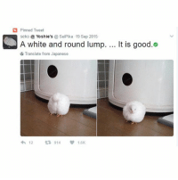 Food, Funny, and Lol: Pinned Tweet  O A White and round lump. It is good  seko Yoshie's  SeiPika 19 Sep 2015  6 Translate from Japanese  12  914  V 1.6K I'm going camping tonight I'm excite ~Michaela ( @michaela.heller_ )•••••••••••••••••••••••••••••••• TAGS TAGS TAGS TAGS TAGS tumblrtextpost tumblrposts textpost tumblr shrek instatumblr memes posts phan funnythings 😂 same funny haha loltumblr lol relatable rarepepe funnythings funnytextposts pepeislife meme funnystuff pepe food spam