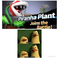 Meme, Clue, and Piranha: Piranha Plant  Joins the  Battle!  KowalSKI  Sorrw  sir no clue Ebig meme