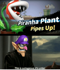 How could you grant him the rank of fighter: Piranha Plant  Pipes Up!  This is outrageous, it's unfair. How could you grant him the rank of fighter
