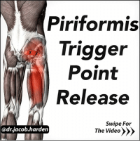 Memes, Target, and Work: Piriformis  Trigger  Point  Release  Swipe For  @dr jacob harden  The Video PAIN IS NOT THE GOAL When we think of Self Myofascial Release (SMR), we often think of the 😣 pain face we see people make while foam rolling. But the pain face isn't the goal. We have been told for the longest time that SMR (and manual therapy) was ⛏ breaking down scar tissue and adhesions in our muscles and connective tissues. But that's simply not the case. Pain is controlled by your brain. And so is the tension and tightness you often feel. So the target of our 💆 therapies, be it specific work like @myodetox or more general work with a roller or lacrosse ball, is actually the nervous system, not the muscles. This should change how we approach SMR. Don't go ham from the get go. The goal is to ease the tension via getting your nervous system to 😏 relax. Only go as hard as you have to to feel a release in tension. For some, that won't be much, and for other it's going to take quite a bit. But find what works for you and go with it. . Try it out with this 3 step progression to rolling the piriformis. A lot of you are going to find that you can get great results with a lot less pain to get there.😄 . Tag friend with back or leg pain and share the wealth! MyodetoxOrlando Myodetox FutureproofYourBody