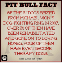 Did you know? Share and raise awareness‼️-Crystal: PIT BULL FACT  OF THE 51 DOGS SEIZED  FROM MICHAEL VICK'S  DOG FIGHTING RING IN 2007.  OVER 30 OF THEM HAVE  BEEN REHABILITATED  AND GONE ON TO LOVING  HOMES. FOUR OF THEM  HAVE EVEN BECOME  THERAPY DOGS  L N  Were Lovers Not Fighters Did you know? Share and raise awareness‼️-Crystal