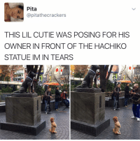 """Kendall Jenner, Memes, and 🤖: Pita  apitathecrackers  THIS LIL CUTIE WAS POSING FOR HIS  OWNER IN FRONT OF THE HACHIKO  STATUE IM IN TEARS """"I follow @kalesalad and u should too"""" - Kendall Jenner and Jesus"""
