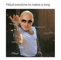 Song, Hahaha, and Worl: Pitbull everytime he makes a song  oye mami  nniqqatrys dick  Mr. 305  Worl  hahaha  Dale!  Pitbull  mare,
