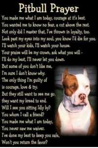 Pitbull Prayer  You made me what I am today, courage at it's best.  You wanted me to know no fear, a cut above the rest  Not only did I master that, Ive thrown in loyalty, too.  Look past my eyes into my soul, you know Id die for you.  Ill watch your kids, Ill watch your house.  Your praise will be my crown, ask what you will  Ill do my best, IT never let you down  But some of you don't like me,  I'm sure I don't know why.  The only thing Im guilty of  is courage, love & try.  But they still want to see me go,  they want my breed to end.  WillI see you sitting Idly by?  You whom I call a friend?  You made me what I am today,  You never saw me waiver.  I've done my best to keep you safe,  Won't you return the favor? Best Dog Poem Ever!!!  <3