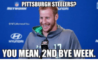 COLD BLOODED!!!  Credit - Dennis Stover: PITTSBURGH STEHERSP  nOAI  NFLMemes4You  HYLUnoAI  YOU MEAN, 2ND BYE WEEK COLD BLOODED!!!  Credit - Dennis Stover