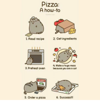 cat 6: Pizza:  A how-to  1. Read recipe  2. Get ingredients  4. Make a huge mess  3. Preheat oven  because you are a cat  6. Success!!!  5. Order a pizza