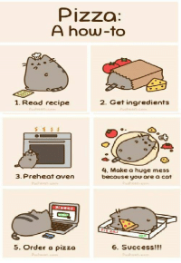 Join Animal Memes. for more :): Pizza:  A how-to  2. Get ingredients  1. Read recipe  4. Make a huge mess  3. Preheat oven  because you are a cat  6. Success!!!  5. Order a pizza Join Animal Memes. for more :)