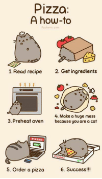 pusheen: Pizza  A how-to  pusheen, com  1. Read recipe  2. Get ingredients  4. Make a huge mess  3. Preheat oven  because you are a cat  Pizzas  5. Order a pizza  6. Success!!!