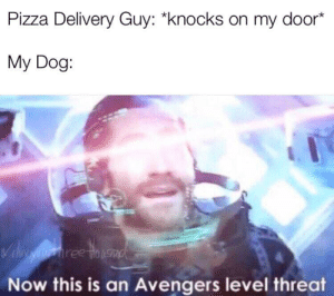 """Pizza Time :): Pizza Delivery Guy: """"knocks on my door*  My Dog:  Vil aiehree tinusad  Now this is an Avengers level threat Pizza Time :)"""