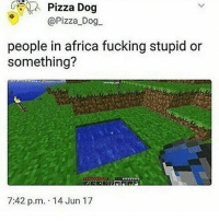 Africa, Fucking, and Instagram: Pizza  Dog  @Pizza Dog  people in africa fucking stupid or  something?  7:42 p.m. 14 Jun 17 Lmao I guess they don't follow lifehack Instagram pages . What idiots