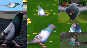 pizzaback: simnostalgia: Fun Fact: Despite how many times The Sims has changed art styles, they'll often reuse assets by just slightly altering them for the new game. One example of this is the pigeon model that they've been reusing and slightly changing since 2004.  why fix something if it aint broke : pizzaback: simnostalgia: Fun Fact: Despite how many times The Sims has changed art styles, they'll often reuse assets by just slightly altering them for the new game. One example of this is the pigeon model that they've been reusing and slightly changing since 2004.  why fix something if it aint broke