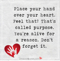 Place your hand over your heart: Place your hand  over your heart  Feel that? That's  called purpose.  You're alive for  a reason. Don't  forget it  Like Love Quotes.com Place your hand over your heart