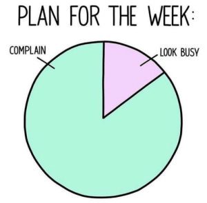 Meirl: PLAN FOR THE WEEK:  COMPLAIN  LOOK BUSY Meirl