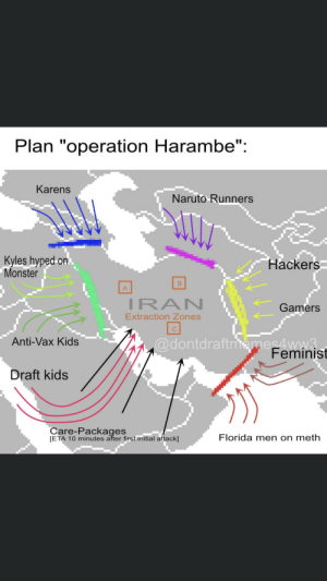 "For someone to take the time to make this...: Plan ""operation Harambe"":  Karens  Naruto Runners  Kyles hyped on  Monster  Hackers  IRAN  Gamers  Extraction Zones  @dontdraftmemes4ww3  Feminist  Anti-Vax Kids  Draft kids  Care-Packages  [ETA 10 minutes after first initial attack]  Florida men on meth For someone to take the time to make this..."