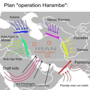 "Trump will be launching Operation Harambe tomorrow.: Plan ""operation Harambe"":  Karens  Naruto Runners  Kyles hyped on  Monster  Hackers  IRAN  Extraction Zones  Gamers  @dontdraftiemes4ww3.  Feminist  Anti-Vax Kids  Draft kids  Care-Packages  [ETA 10 minutes after first initial attack]  Florida men on meth Trump will be launching Operation Harambe tomorrow."