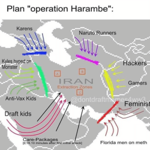 "Don't forget the memelords.: Plan ""operation Harambe"":  Karens  Naruto Runners  Kyles hyped on  Monster  Hackers  IRAN  Extraction Zones  Gamers  @dontdraftniemes4ww3  Feminist  Anti-Vax Kids  Draft kids  Care-Packages  [ETA 10 minutes after first initial attack]  Florida men on meth Don't forget the memelords."