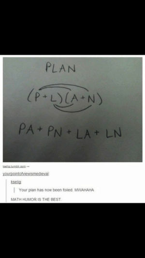 Your Plan Has Been Foiled: PLAN  (P.LYCA N)  PA PN LA LN  elitumblr.cm  yourpointofviewismedieval  kselig  Your plan has now been foiled. MWAHAHA  MATH HUMOR IS THE BEST. Your Plan Has Been Foiled