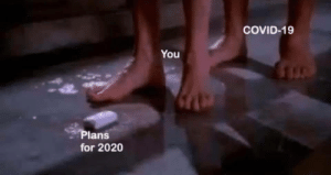 Plans for 2020: Plans for 2020
