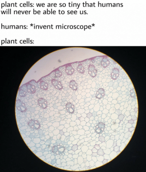 Invent: plant cells: we are so tiny that humans  will never be able to see us,  humans: *invent microscope*  plant cells: