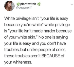 "Troubles: plant witch  @veganelff  White privilege isn't ""your life is easy  because you're white"" white privilege  is ""your life isn't made harder because  of your white skin."" No one is saying  your life is easy and you don't have  troubles, but unlike people of color  those troubles aren't BECAUSE of  your whiteness."