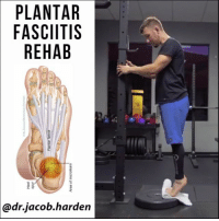 HOW TO MAKE YOUR PLANTAR FASCIA STRONGER Plantar fasciitis is kind of a misnomer. The -itis implies 🔥 inflammation, but it actually is much more like a tendinopathy, which has little to no inflammation at all. Good thing is, it responds much the same way as well. Both ↔ stretching and ⛃ loading are good options for your rehab. The stretch shown here is a good option as are the ones I posted the other day. But today, let's focus on loading because while both options can get rid of pain, only loading is going to build long term resiliency. In this 📊 study by Rathleff et al, they compared loading to stretching. The loading group did this single leg calf raise variation with the following protocol. . 🔹3 seconds up on two feet. 2 second hold at the top. And 3 seconds down on 1 foot. 🔸Week 1 - 3 sets of 12 reps 🔸Weeks 2 & 3 - 4 sets of 10 reps 🔸Weeks 4+ - 5 sets of 8 reps They added weight via a backpack loaded with books, but holding a heavy kettlebell or dumbbell would work as well. Just make sure you're having to work. In addition to this, you need to ⤵ back off on whatever bothers your foot. Nothing heals if you continue to pick the scab. Take it easy, get 💪 stronger, and build back up SLOWLY. You'll come back more resilient and better than ever. Tag a friend with plantar fasciitis and share the wealth! MyodetoxOrlando Myodetox: PLANTAR  FASCITIS  REHAB  @dr.jacob.harden HOW TO MAKE YOUR PLANTAR FASCIA STRONGER Plantar fasciitis is kind of a misnomer. The -itis implies 🔥 inflammation, but it actually is much more like a tendinopathy, which has little to no inflammation at all. Good thing is, it responds much the same way as well. Both ↔ stretching and ⛃ loading are good options for your rehab. The stretch shown here is a good option as are the ones I posted the other day. But today, let's focus on loading because while both options can get rid of pain, only loading is going to build long term resiliency. In this 📊 study by Rathleff et al, they compared loading to stre