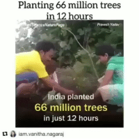 Music is 432 Hz Look Within by @4biddenknowledge Repost @evolved_obsession @iam.vanitha.nagaraj ・・・ greenrevolution way to go💞🌎🌲🌳🐝🐝 4Biddenknowledge: Planting 66 million trees  in 12 hours  enceNaturePage  Pravesh Yadav  India planted  66 million trees  in just 12 hours  ロ0 iam.vanitha.nagaraj  Lliam.vanitha.nagaraj Music is 432 Hz Look Within by @4biddenknowledge Repost @evolved_obsession @iam.vanitha.nagaraj ・・・ greenrevolution way to go💞🌎🌲🌳🐝🐝 4Biddenknowledge
