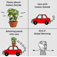 Cars, Global Warming, and Harvard: Plants absorb  Carbon Dioxide  Cars emit  Carbon Dioxide  Attaching plants  onto cars  End of  Global Warming  03