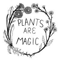 Tumblr, Blog, and Http: PLANTS  ARE  MAGIC madisonsaferillustration:They certainly are!