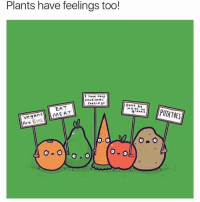 Wshh, Mean, and Evil: Plants have feelings too!  I have  dee  Fee Lin  Dont be  mean to  POTATOES  MEAT  ans  Vee 9  Are EVIL  O a O 😂 Potatoes!! #Vegans #WSHH