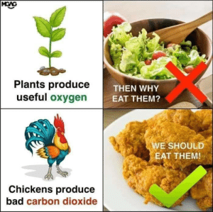 Bad, Dank, and Memes: Plants produce  useful oxygen  THEN WHY  E  EAT THEM?  WE SHOULD  EAT THEM!  Chickens produce  bad carbon dioxide Checkmate by alwasdanyal MORE MEMES
