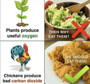 Bad, Oxygen, and Carbon: Plants produce  useful oxygen  THEN WHY  EAT THEM?  WE SHOULD  EAT THEM  Chickens produce  bad carbon dioxide Should we start eating vegans, too?