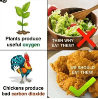 Bad, Dude, and Memes: Plants produceT  useful oxygen  THEN WHY  EAT THEM?  E SHOULD  EAT THEM!  Chickens produce  bad carbon dioxide KFCO2 my dude. via /r/memes http://bit.ly/2WCkDFa