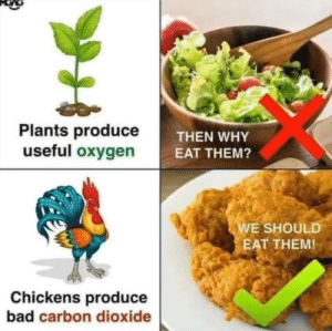 Bad, Dank, and Memes: Plants produceT  useful oxygen  THEN WHY  EAT THEM?  E SHOULD  EAT THEM!  Chickens produce  bad carbon dioxide *Several people are typing* by EagleHeartFra MORE MEMES