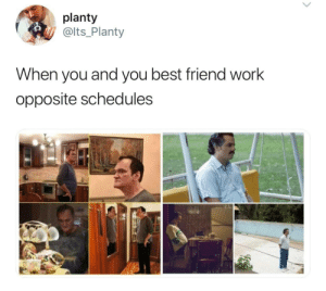 Opposite: planty  @lts_Planty  When you and you best friend work  opposite schedules