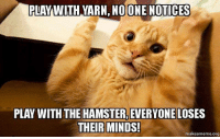 Memes, Hamster, and Mind: PLAY WITH YARN DONE NOTICES  PLAY WITH THE HAMSTER, EVERYONE LOSES  THEIR MINDS!  makeameme org