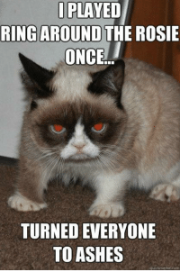 Animals, Love, and Meme: PLAYED  I PLAYED  RING AROUND  THE ROSIE  ONCE...  TURNED EVERYONE  TO ASHES  quick meme com Join Animal Memes. if you love laughing and animals :D