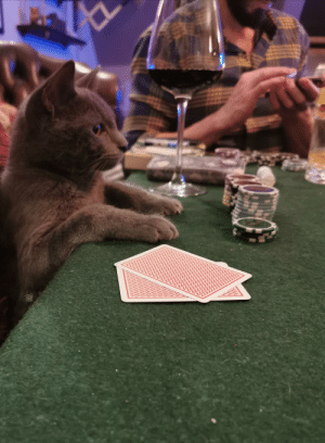 Played poker with my friends tonight: Played poker with my friends tonight