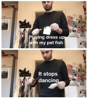 Dancing, Reddit, and Dress: Playing dress up  with my pet fish  It stops  dancing U ok admiral flippers