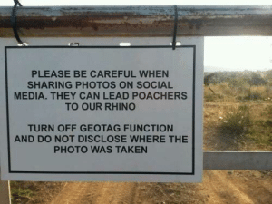 wholesome hoomans (also happy july 4th): PLEASE BE CAREFUL WHEN  SHARING PHOTOS ON SOCIAL  MEDIA. THEY CAN LEAD POACHERS  TO OUR RHINO  TURN OFF GEOTAG FUNCTION  AND DO NOT DISCLOSE WHERE THE  PHOTO WAS TAKEN wholesome hoomans (also happy july 4th)