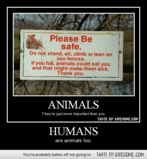 Humanshttp://omg-humor.tumblr.com: Please Be  safe.  Do not stand, sit, climb or lean on  zoo fences.  If you fall, animals could eat you  and that might make them síck.  Thank you.  ANIMALS  They're just more important than you.  TASTE OF AWESOME.COM  HUMANS  are animals too.  TASTE OFAWESOME.COM  You're probably better off not going to Humanshttp://omg-humor.tumblr.com