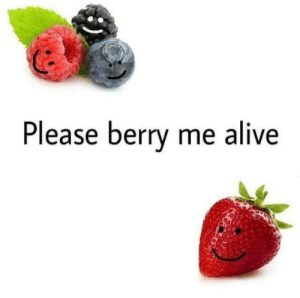 Alive, Please, and Berry: Please berry me alive