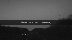 Sorry, Back, and Please: Please come back, i'm so sorry