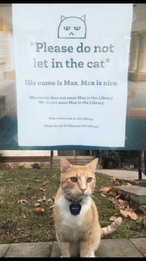Sorry, Library, and Nice: Please do not  let in the cat*  His name is Max. Max is nice.  His owner does not want Max in the Library  We do not want Max in the Library  Max wants to be in the Library  Please do not let Max into the Library  MAX Sorry, Max. I can't let you in!