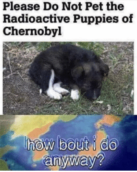 Memes, Puppies, and 🤖: Please Do Not Pet the  Radioactive Puppies of  Chernobyl https://t.co/4uyn8LGZ2h